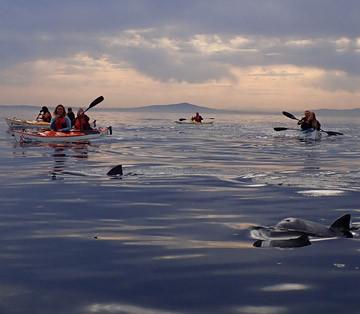 Kaskazi Kayaks & Adventures - #1 Travellers Choice - Sea
